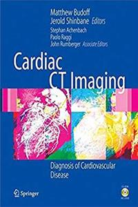 Cardiac CT Imaging: Diagnosis of Cardiovascular Disease ePub download