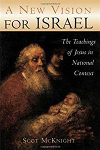 A New Vision for Israel: The Teachings of Jesus in National Context (Studying the Historical Jesus) ePub download